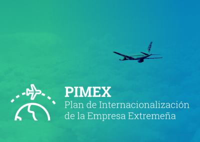 Programa PIMEX