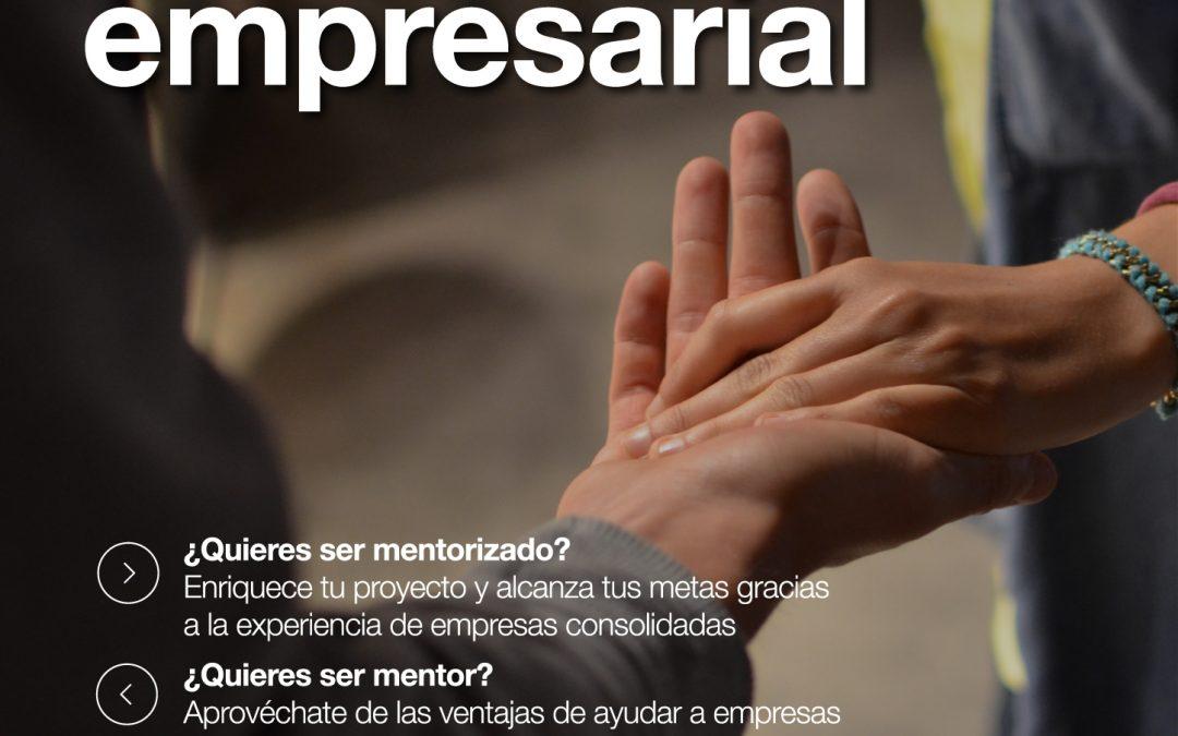 El programa Mentoring Empresarial busca empresarios consolidados para apoyar a nuevos emprendedores