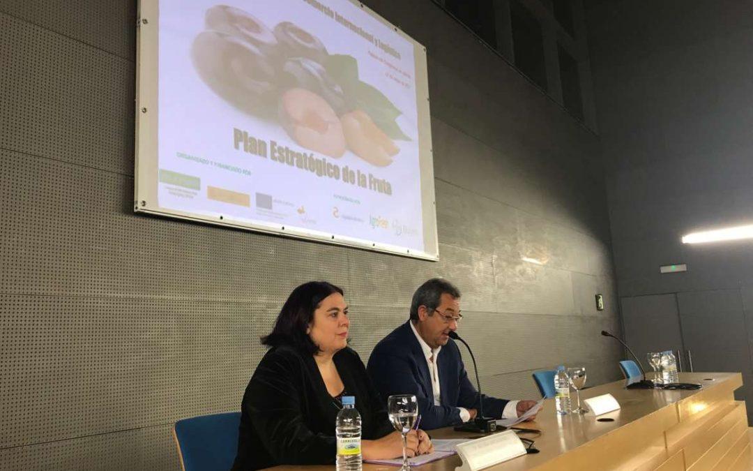Junta y Afruex ponen en marcha el Plan Estratégico de la Fruta con el objetivo de optimizar el sector