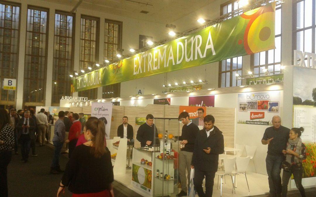 Una veintena de empresas extremeñas de frutas y hortalizas expondrán del 7 al 9 de febrero en Berlín