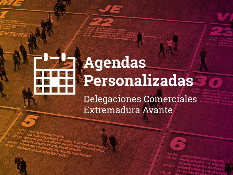 Agendas personalizadas 2019
