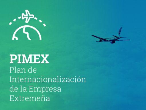 Plan de internacionalización de la empresa extremeña, PIMEX 2020