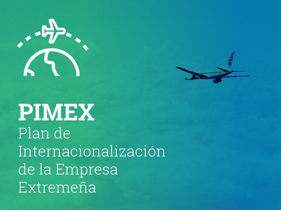PIMEX 2019