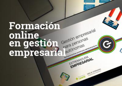 Formación online en gestión empresarial
