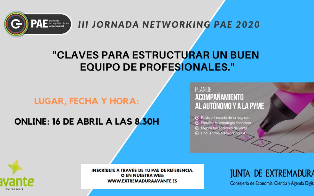 La red PAE continúa con las III Jornadas Networking PAE 2020 en formato online