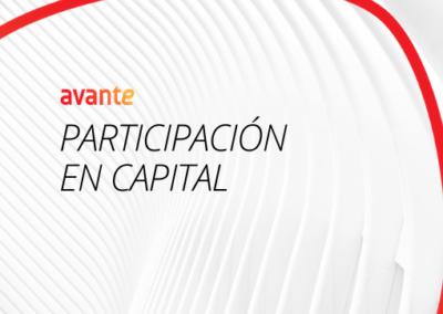 Participación en capital