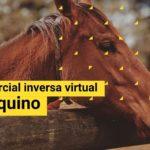 Misión comercial inversa virtual sector Equino 2021