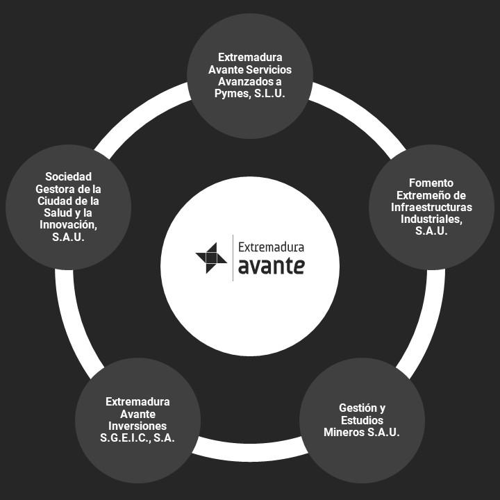 Estructura Empresa Avante