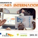 Formación y Asesoramiento en Licitaciones Internacionales. Proyecto FAROTIC.