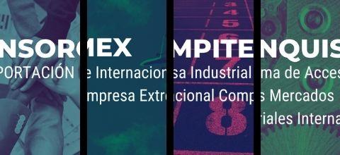 Publicada la convocatoria de ayudas para la participación de empresas extremeñas en los Programas de Impulso a la Internacionalización de Extremadura Avante